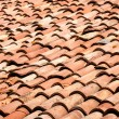 Tiles on old castle roof — Stockfoto
