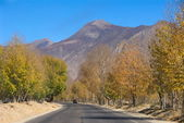 Road to Lhasa — Stock Photo