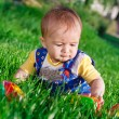 Baby girl in the grass — Stock Photo #8605041