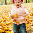 Toddler in autumn park — Stok fotoğraf