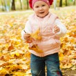 Toddler in autumn park — Stock fotografie