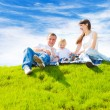 Happy family on grass — Stock Photo