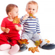Autumn babies — Stock Photo