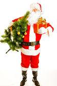 Santa with present and christmas tree — Zdjęcie stockowe