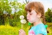 Girl blowing at the dandelion — Stock Photo