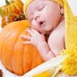 Baby sleeping on pumpkin — Stock Photo #8691929