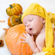 Happy halloween greeting card — Stock Photo #8691975