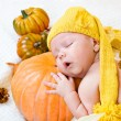 Happy halloween greeting card — Stock Photo