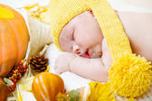 Newborn kid among pumpkins — 图库照片