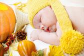 Newborn kid among pumpkins — Stock Photo