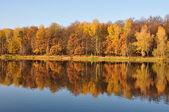 Autumn. — Stock Photo