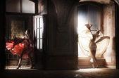 две сексуальные женщины в великолепные платья — Стоковое фото