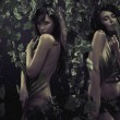 Two sexy women in jungle — ストック写真