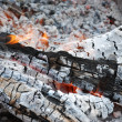 Stock Photo: Charred in campfire