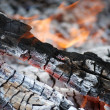 Charred in campfire — Stock Photo