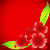 Five red lilies 2 — Stock Vector