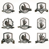 Set of vintage retro premium quality badges and labels — ストックベクタ