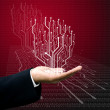 Circuit board graphic line on hand ,Technology background — Stock Photo
