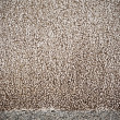 Abstract of Grunge sand wall texture - Foto Stock