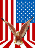 Eagle statue with American flag background — Stok fotoğraf