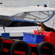 Dog sit on box in the fisherman boat — Stock Photo