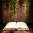 Stock Photo: Open book on wooden table