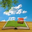 Red chair on grass in the open book — Stock Photo