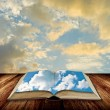 Open book to blue sky — Foto Stock #9891068