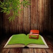 Foto Stock: Red chair in open book
