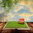 Open book to the park with sunset sky — Stock Photo