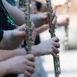Stock Photo: Flutes in parade