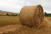 Stack of straw on a field — Stok fotoğraf