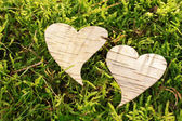 Heart out of bark — Stock Photo