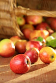 Basket of Apples — Stock Photo