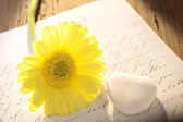 Stone heart with letter and flower — Stock Photo