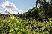 The village of Villars in Provence — ストック写真