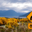 Stock Photo: Yellow broom bushes and road sign at Milford Road