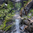 Stock Photo: Small water fall in Milford Sound