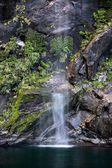 Small water fall in the Milford Sound — Stock Photo