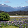 Stock Photo: Eglinton River Valley
