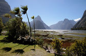 Milford Sound and Mitre Peak — Stock Photo