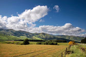 Farmland near Mossburn between Queenstown and Te Anau — Stock Photo