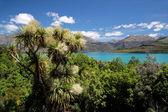 Lake Wakatipu between Queentown and Glenorchy — Stock Photo