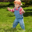 Stock Photo: Toddler make first steps in the garden