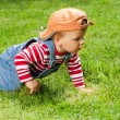 Toddler crawling in the garden - Stock Photo