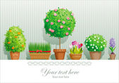 Plantas en maceta — Vector de stock