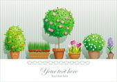 盆栽植物 — 图库矢量图片