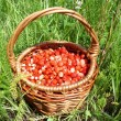 Stock Photo: Basket of strawberries