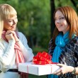 Two sisters with gift in the park — Stock Photo
