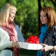 Two sisters holding gift in the park - Stock Photo